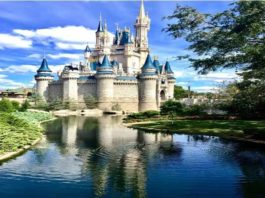Ways to Access Disney Hub on Mobile Step-by-step