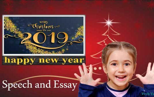 Happy New Year Speech and Essay 2019