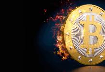 bet with bitcoin on the 1xBit platform